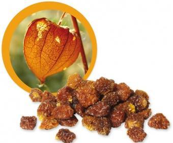 incan goldenberries BIO Lifefood